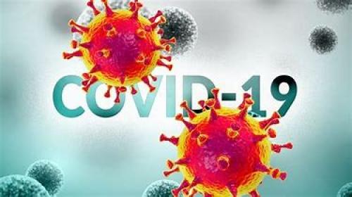 COVID-19 (testare rapida IgG/IgM)